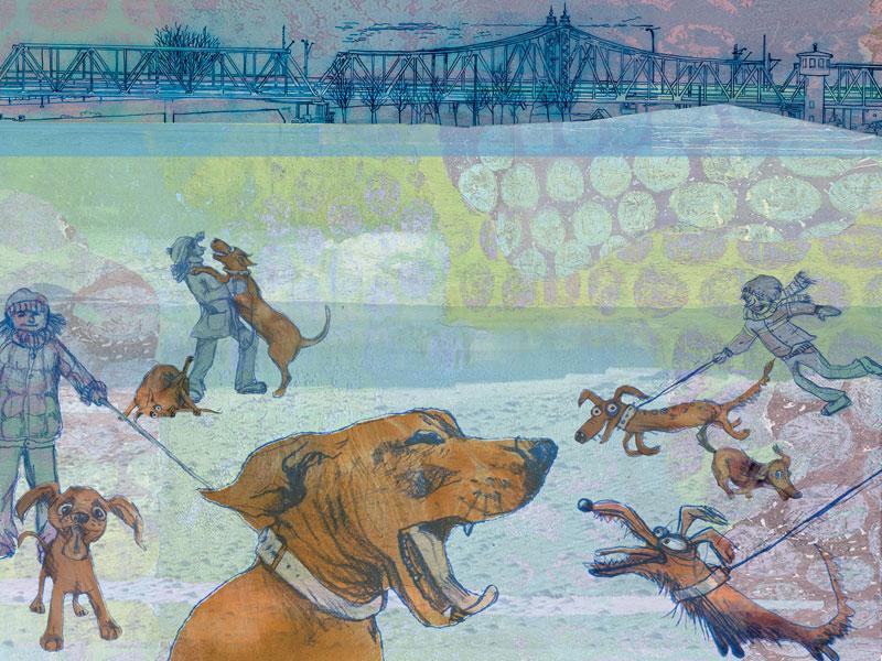 Hunder i Elveparken